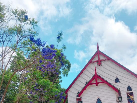 たまたま通りかかった、教会と季節の花