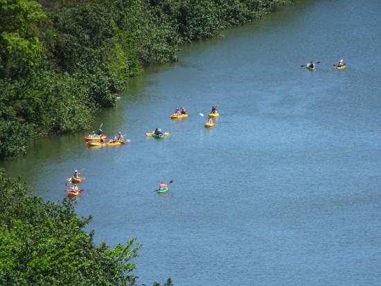 ワイルア川を愉しむカヌーの群れ