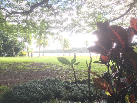 植物園内のロケ地