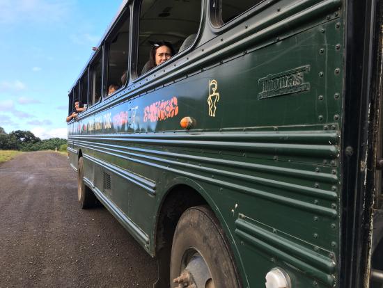 ロケ地巡りツアーのバス