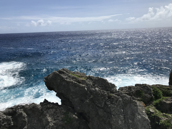 最後は大海原を眺めながらランチ