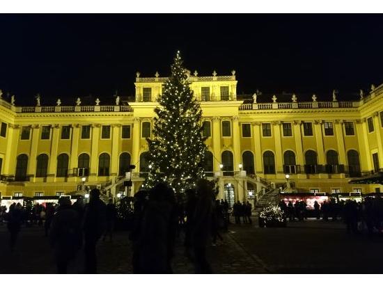夜のシェーンブルン宮殿
