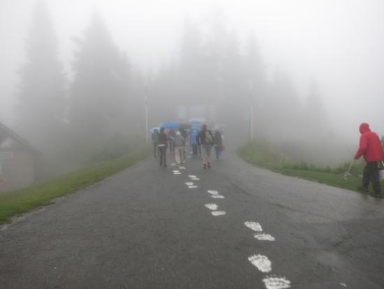 霧で足元が見づらい