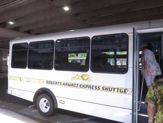 バス車内も広く、快適です!
