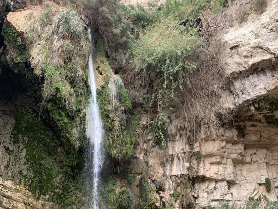エンゲディのダビデの滝