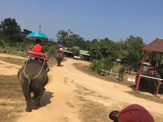象さん乗り