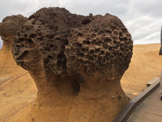 野柳の海蝕台
