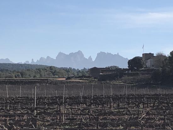 モンテスラットを臨むオレール・デル・マス