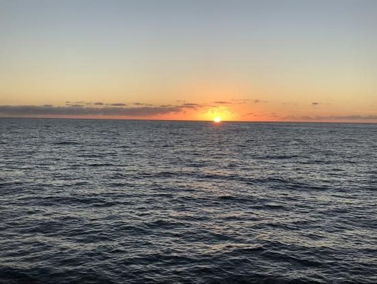 タスマン海に沈む夕日。水平線の向こうはオーストラリア