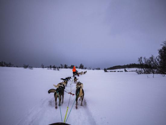 前後左右真っ白な雪原。雪国の厳しさを感じます。