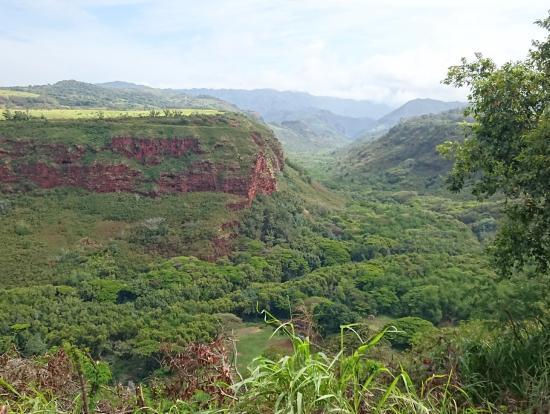 ハナペペの谷