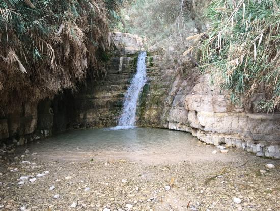 エンゲディの滝