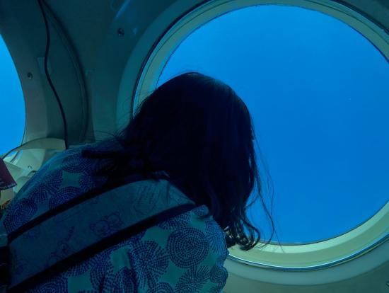 艦内は、どの席でも快適に海の中を見られます