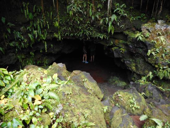 溶岩洞窟入口