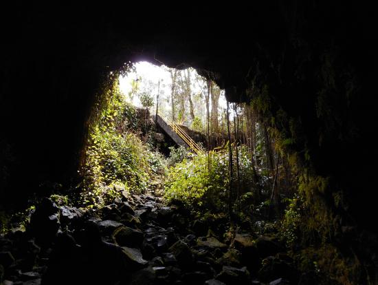 溶岩洞窟の中から入口を撮影