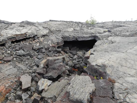 溶岩台地 この空洞の中をマグマが通って行ったんですね