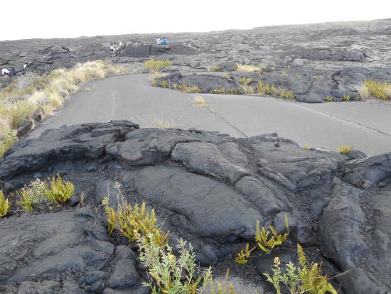 溶岩に飲み込まれた旧道