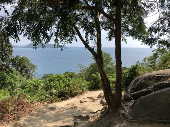 象の上からの景色