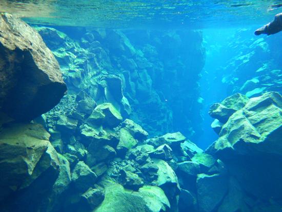 シフルラの深いところは50mくらいあるそうです。