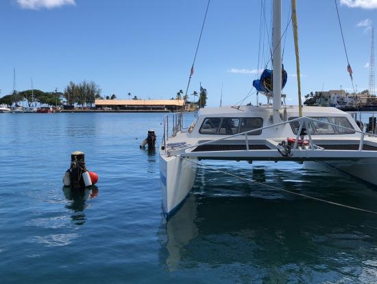 これが乗船する舟。割と安定してます。