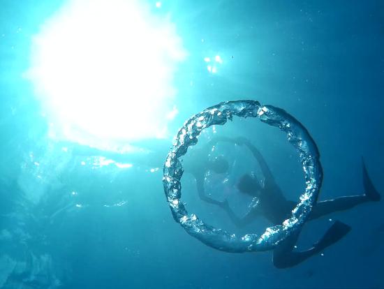 気さくなガイドさんが海底から撮ってくれた1枚