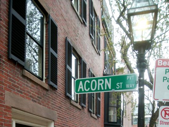 石畳で有名な Acorn street