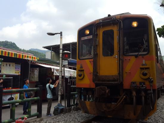 電車が来ると一斉に散らばって通過を見守ります