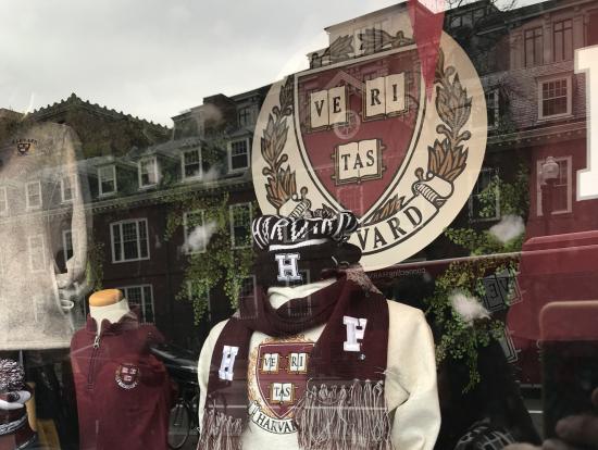 ハーバード大学グッズのお店には寄れません!