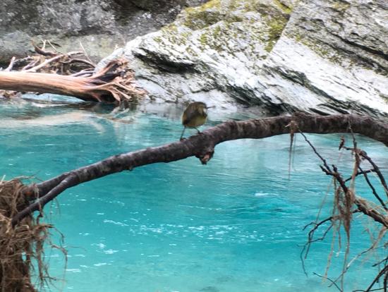 何とも言えないきれいな水の色