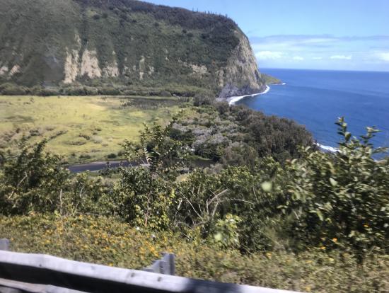 4輪車からの眺め