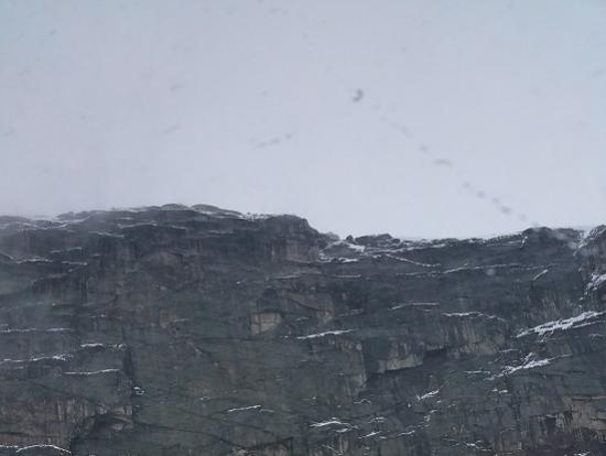 雪が降っていました!