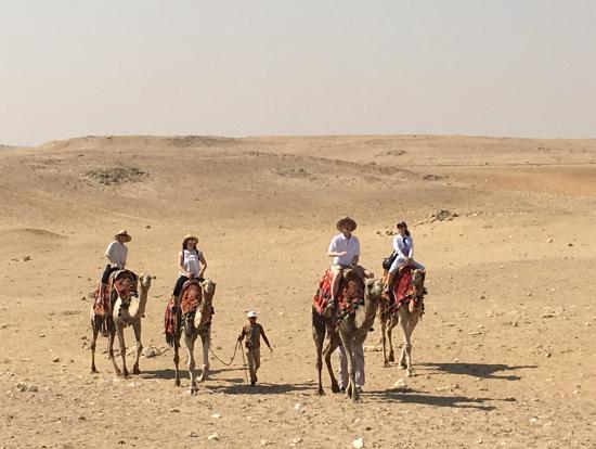 サハラ砂漠にて(とは言っても、単にギザのピラミッドの裏手ですが)
