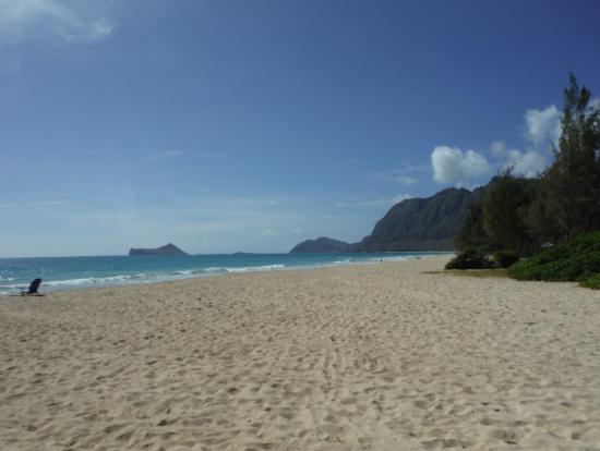写真撮影場所のビーチ