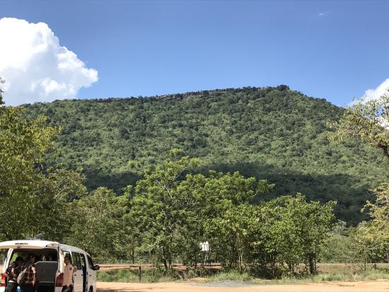 この麓から山の右上にちょこんとしてるところまで行きます!