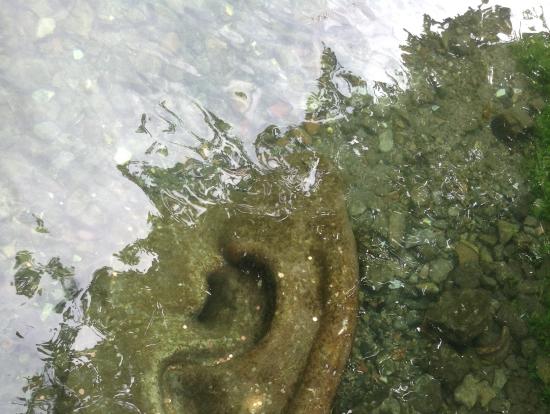 ソルグの水は とてもきれいで冷たくて心地よかったです。