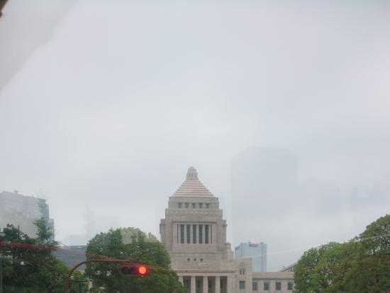 国会議事堂。衆議院のほうが2つ建物があるそうです。