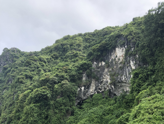 洞窟のあった島