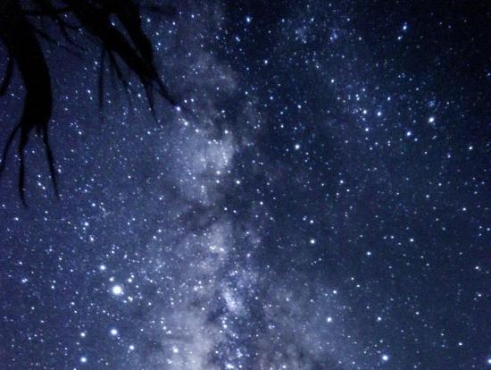 超満点の星空!