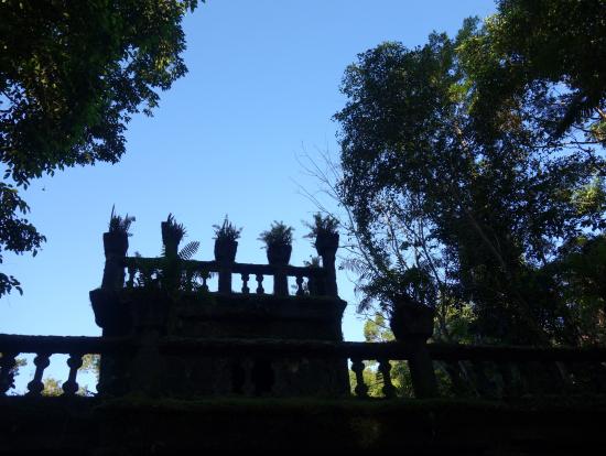 木陰から撮影したパロネラパークの建物